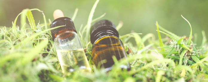 How Long Until Your CBD Oil Goes Bad