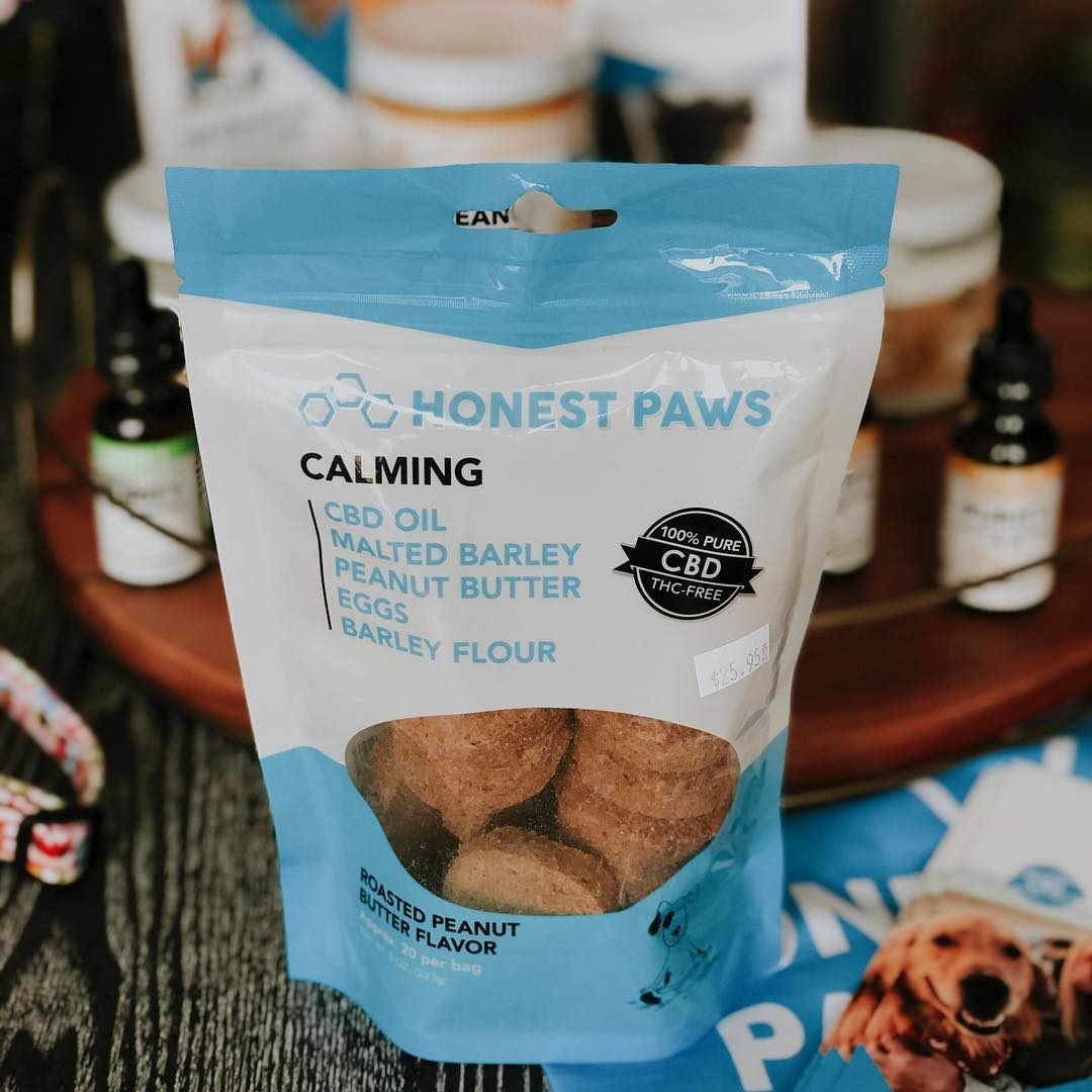 10 Best CBD Dog Treats