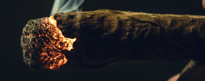 4 Best CBD Blunts You Have to Try